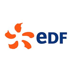logo of the EDF company